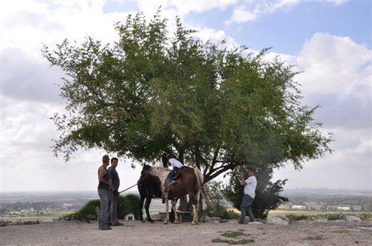 20130419 JINIS NABALA AL-HADITHA 120