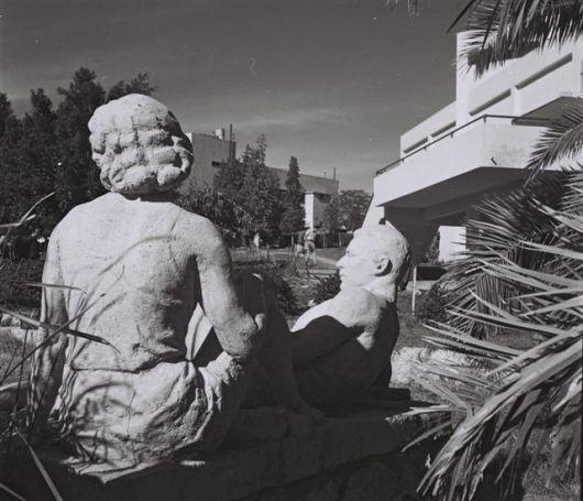 זולטן קלוגר תל יוסף 19466