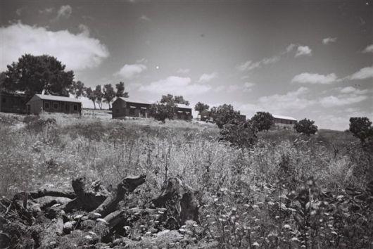 צילום זולטן קלוגר משמר דוד 1949 3
