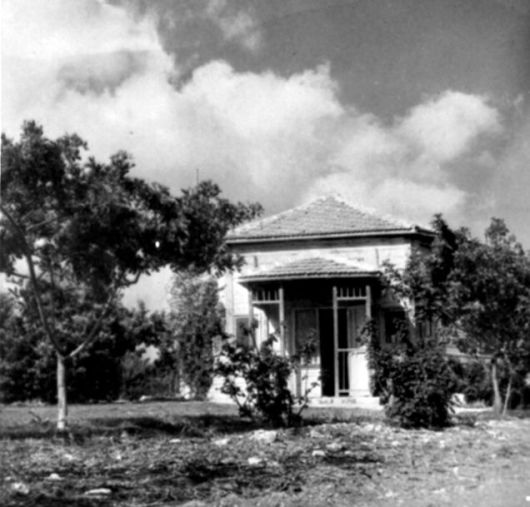 המשושה בעין השופט-1950