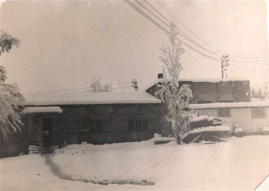 1950 שלג
