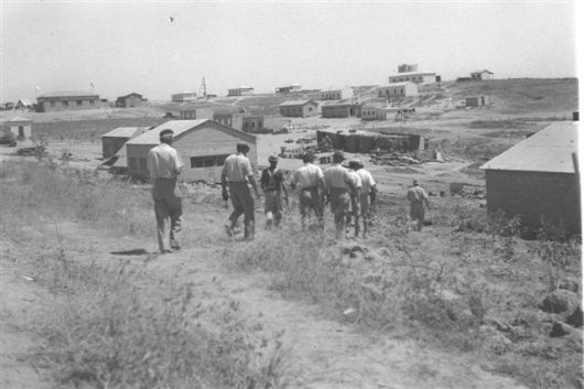 זולטן קלוגר 1946