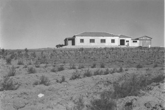 זולטן קלוגר 1947