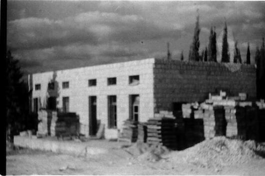 מפעל תאנים שנות 50