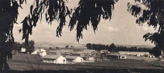PikiWiki_Israel_10211_nir_eliyahu 1956