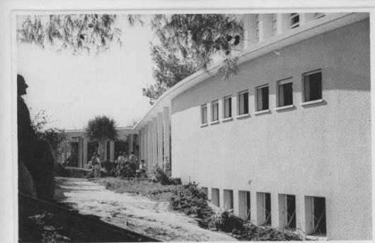 t371 דיפל אינג אולם ויצמן זאב פורת 1952 (2)
