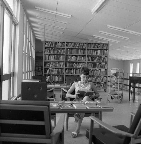 עלוה אליאב בספריה